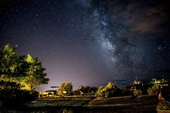 Milky Way, Lake Powell (Lucas Vuitel Photography) Tags: california arizona sky usa cloud lake tree night dark way stars landscape star utah united page powell nights states milky voie toiles milkyway wahweap tatsunis lacte