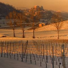 at sunset today (rinogas) Tags: sunset italy snow tree castle vineyard wine piemonte castellinaldo roero rinogas bestevergoldenartists creativephotocafe