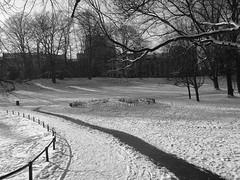 Courbes - Curves - On explore rank 333 - 23/01/2013 (p.franche Occupé - Buzzy) Tags: brussels blackandwhite bw snow ice europe belgium belgique noiretblanc sneeuw bruxelles nb neige brussel schaarbeek schaerbeek glace belgïe lx3 parcjosaphat josaphatpark mygearandme pascalfranche pfranche bestevercompetitiongroup