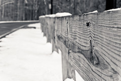 Wooden fence (anks79) Tags: wood blackandwhite usa snow cold weather fence season 50mm blackwhite nikon pennsylvania january pa woodenfence chill buckscounty lightroom langhorne d90 2013 dpsseasonal