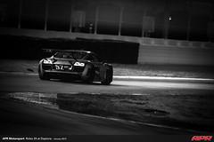 APR-Motorsport-Rolex-24-2013-120