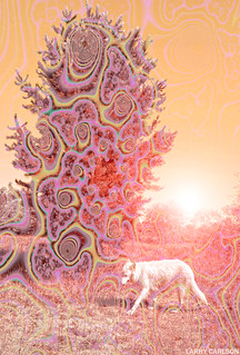 LARRY CARLSON, The White Wolf, digital photography, 2013