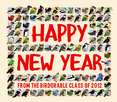 Happy New Year (birdorable) Tags: cute bird happynewyear birdorable