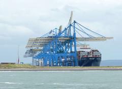 Le Havre - Port 2000 (Philippe Aubry) Tags: normandie seinemaritime paysdecaux pointedecaux lehavre port terminalconteneurs port2000 portiques grues
