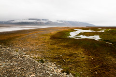 Arctic nature (danielfoster437) Tags: arctic arcticcircle arcticnature arcticsummer arctictundra beautifullandscape beautifulnature biodome biome landscape nature outdoors spitsbergen svalbard terrain tundra wilderness