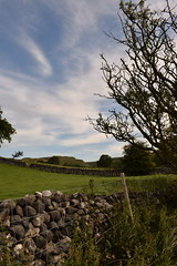 Malham (Beth Sreeves) Tags: morning yorkshire landscape wall trees sky malham farm fields countryside dales national park outdoor