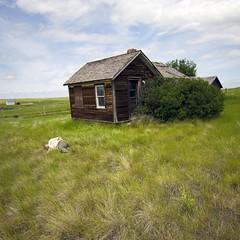 Yard rubbish (brakes4bunnies) Tags: alberta house home field grassbody trash calakmul