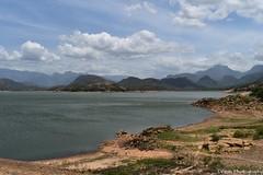 Amaravathi Dam With Backdrop of Chinnar Wildlife Sanctuary (Dinesh flicks) Tags: munnar munnarphotos munnarscenaries munnartouristspot devikulam topstation amaravathidam chinnarwildlifesanctuary thekkady dinesh photography kerala