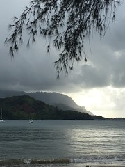 IMG_0152 (davidhegarty2) Tags: hawaii ocean hanalei