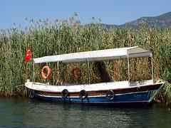 Turcja - rzeka Dalyan (tomek034 (Thank you for the 1 100 000 visits)) Tags: turcja turkiye turkey d rzeka dalyan