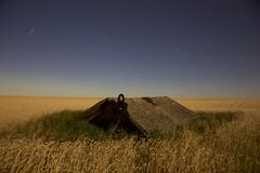 Me in the Wheat (John Andersen (JPAndersen images)) Tags: abandoned alberta aurora calgary carstairs clouds farm night self stars wheat