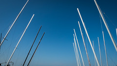 Day Trip To Whitstable - Masts (Rob Jennings2) Tags: whitstable whitstableharbour boats mast masts maritime
