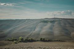 Week 39 (Stefan Saros) Tags: crete senesi siena toscana italia italy hills clouds sky blue terrain earth trees