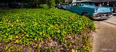 Green avenue (ericbaygon) Tags: green vert verdure chevy chevrolet belair bleu blue d300s nikon passion 1957 meeting bratzmonkeys