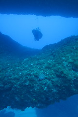 through the arches (loose-ends) Tags: doublearch gozo dive diving mediterranean sea