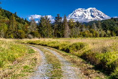 Dirt-Road-MT-Rainier (Rob Green - SmokingPit.com) Tags: copper creek road rd dirt gravel forest fire wa washington pierce county evergreen trees fall colors snow rock blue sky skies skys back offroad canon 7d mark ii national pacific northwest cascade mountain range rob green