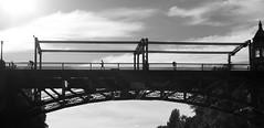 DSC01805 (cameronalvarado) Tags: lake union lakeunion boating seattle washington uw university bridge bridges stadium