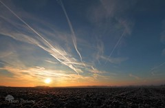 V / (photosenvrac) Tags: winter sky sun cold nature field plane landscape soleil photo track hiver trace culture ciel labour plow paysage froid avion champ thierryduchamp
