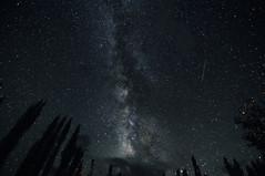 milky way (fotobiscotto) Tags: sky india night stars space galaxy universe comet meteor asteroid milkyway nubra