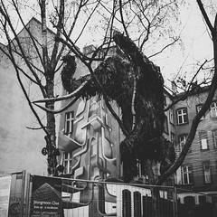 DSC00077 (Jules Holleboom) Tags: street autumn winter berlin ex berg sigma mitte prenzlauerberg dn berlijn prenzlauer 19mm