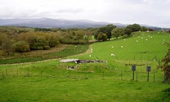 Capel Garmon [October 2010] (DizDiz) Tags: uk wales stones prehistoric neolithic burialchamber olympusc720uz