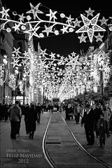 Feliz Navidad a todos mis amigos de Flickr. Merry Christmas to all my Flickr`s friends. (Javier Martinez de la Ossa) Tags: bw espaa navidad luces sevilla andaluca nikon seville bn nocturna andalusia espagne tranva siviglia d700 tranva nikond700 javiermartinezdelaossa blinkagain galleryoffantasticshots flickrsfinestimages1