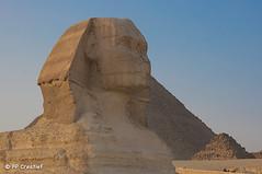 The Sphinxs of Giza (FP Creatief) Tags: belgium egypt giza antwerpen mechelen egypte sphinks nikond90 fpcreatief gizzeh