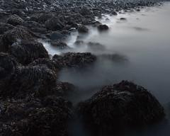 Long water (wookeeh) Tags: canon eos 450d ef1740mmf4l lee filter longexposure iceland beach rocks mist fog water sea algae week51 2012 52weeksthe2012edition 522012 weekofdecember16 nd 06 grad hard nd06gradhard