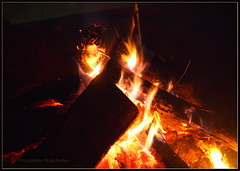 fire pits.. (RubySarkar) Tags: tennessee parks first shelby nights farms starry