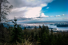 Vancouver Landscape (cariboutuf) Tags: vancouver cypress