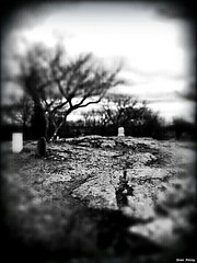 """Cold Place"" (Bone Felon) Tags: blackandwhite white black cemetery digital marblehead victorian negative carbon transfer vignette alternative processes flickrandroidapp:filter=none"