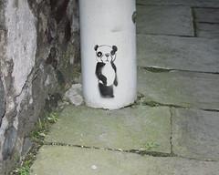 (e_alnak) Tags: art graffiti stencil paint panda pavement spray aerosol giantpanda pochoir endangeredspecies chordata ealnak urbanpanda