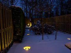 The Blue hour (Dimormar!) Tags: snow garden sneeuw bluehour tuin blauweuur