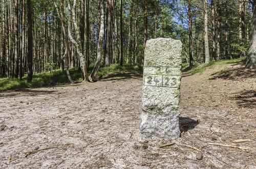 Way marking in a forest / Wegzeichen im Wald