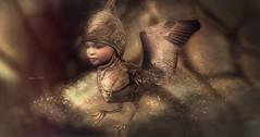 Unborn! ... by Niani (xxnianixx (...**aka Tijana**)) Tags: niani sl secondlife traveller bird unborn art textured