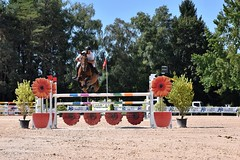 DSC_1094 (2) (ploufjf_64) Tags: paus show jumping chevaux pau 2016