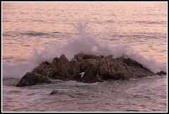 Vagues - le de Noirmoutier (Vende) (Les photos de LN) Tags: vagues cume rochers mouette paysage crpuscule ledenoirmoutier vende ocanatlantique