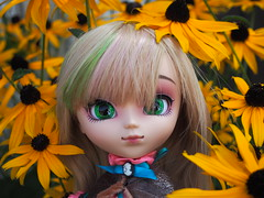 Adventures with... Amelia (sh0pi) Tags: pullip amelia pullpstyle exklusiv exclusive doll fashion puppe groove pullipstyle 2016 limited edition le 400 p179 august