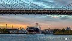 boats (The Photo Smithy) Tags: blackwattlebay sydneyharbour bridge ship sunset yachts