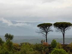 La plaine et le Massif des Maures (fotomie2009 OFF) Tags: francia vidauban france provence provenza var