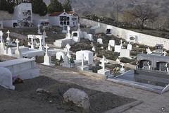 Campamuerto. (elojeador) Tags: cementerio cementeriodeljar rbol almendro ciprs flor ramo lpida epitafio tumba nicho tmulo cruz mrmol cal palo palodelaluz paradescampar elojeador