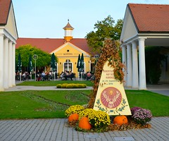 Kpen ostrov (stano.jas.malak) Tags: piestany pieany slovakia slovensko slowakei spa heilbad