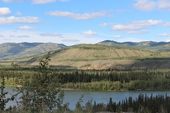 Yukon River Valley (demeeschter) Tags: canada yukon territory klondike highway lake mountain scenery landscape nature wildlife fire forest river