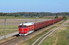 628 001 H-START (M62 001 MV) (...sneken a vonat) Tags: 0010 160928 628 628001 628001start bahn szarvas cukorrpa cukorrpaszezon2016 eisebahn line125 luganszk m62 m62001 mav mozdony mv rail railway szergej tehervonat train tren trenur trenuri vaggonstypeeas vast vlacik vlak vlaky vonat zeleznice locationszarvas 3csabacsud2016