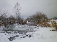 Intermezzo / todays mood (fxdx) Tags: trees ice nature frozen pond intermezzo