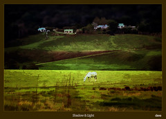 Shadow & Light (david.gill12) Tags: southafrica midlands kzn greatphotographers