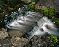 Fern Spring, Late May (James L. Snyder) Tags: california park usa white green wet water pool grass horizontal flow waterfall nationalpark moss spring slick saturated shiny rocks whitewater afternoon natural little stones famous low small gray relaxing may restful rocky falls fresh sierra glossy valley yosemite tiny short granite translucent late yosemitenationalpark sierranevada healing refreshing cascade 2009 current slippery dripping sylvan damp soothing glassy smallest yosemitevalley overflow soaked protected comforting overflowing drenched spilling babbling moist glistening nestled fernspring gurgling mariposacounty sheltered lulling rejuvenating