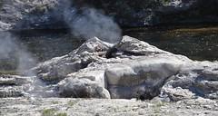 Mortar Geyser (James St. John) Tags: morning glory group basin upper mortar yellowstone wyoming geyser