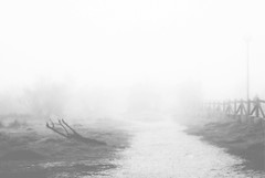 Maana de Domingo (Ogeid66) Tags: fog niebla nikond80 ogeid66