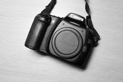 My old DSLR - Canon 30D (sunny sunday) Tags: canon 35l